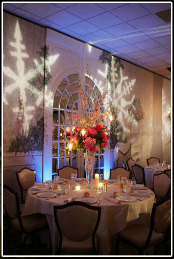 Wedding Event Lighting Themes